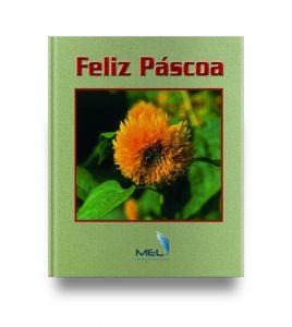 book_307_14d2f1a7